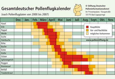 pollenkalender.jpg